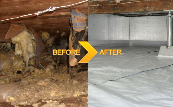 Toledo crawl space cleanup toledo water damage services for Crawl space plumbing